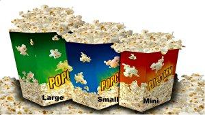 Gourmet Popcorn 3 sizes